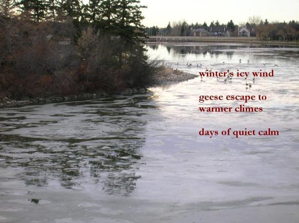 winter-haiku8