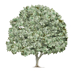 moneytree_page1_image1