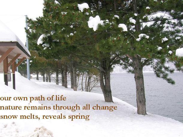 snow melts reveals spring